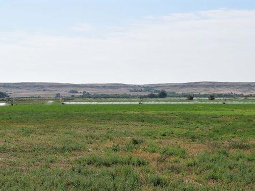 Dawson Irrigated Farm : Glendive : Dawson County : Montana