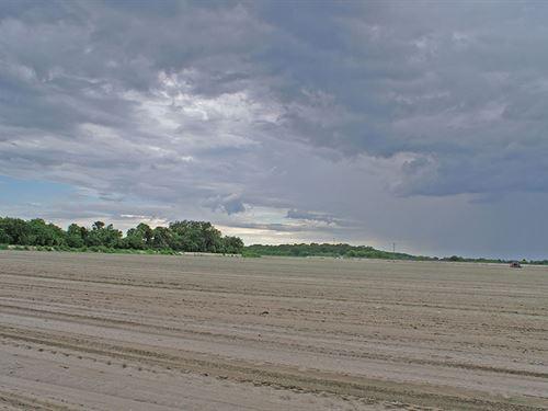 Felda Ridge Farm : Felda : Hendry County : Florida
