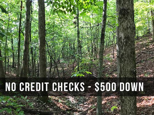 5 Acres Bordering National Forest : Birch Tree : Shannon County : Missouri
