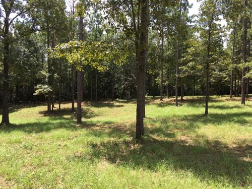Commercial Property For Sale Hattie : Hattiesburg : Forrest County : Mississippi