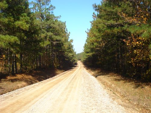 Greenway Tract : Eatonton : Putnam County : Georgia