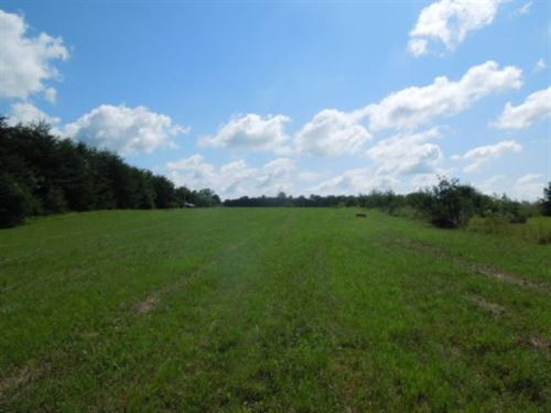 8.73 Ac Located In Jackson Co. Tn : Cookeville : Jackson County : Tennessee