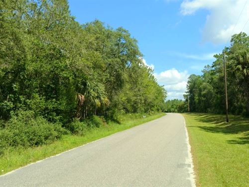 10+ Acres In Ne Marion Co., Fl : Ft McCoy : Marion County : Florida