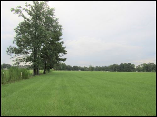 24.4 Acres In Marion County : Foxworth : Marion County : Mississippi
