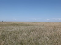 Sailsbery Land Auction : Weldona : Morgan County : Colorado