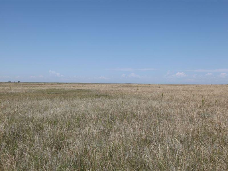 Sailsbery Land Auction : Weldona : Morgan County : Colorado