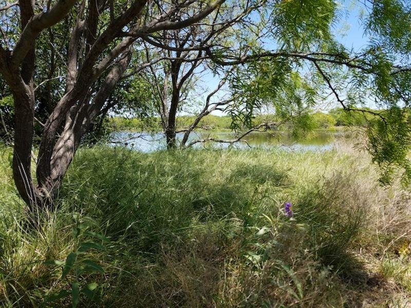 Poage Hill West Ranch : Throckmorton : Throckmorton County : Texas
