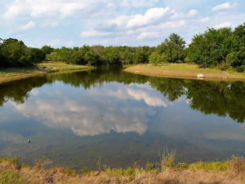 Hollingsworth Game Ranch : Hico : Hamilton County : Texas