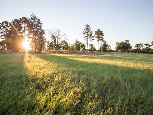 Twin Oaks Ranch on Lake Cypress Spr : Scroggins : Franklin County : Texas