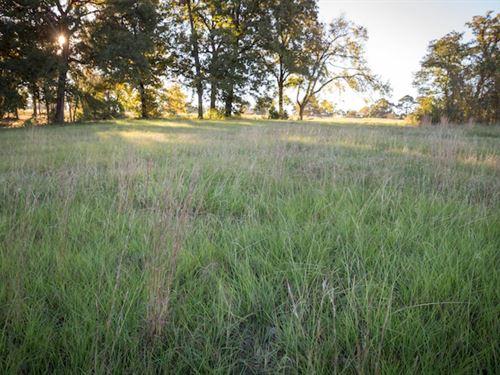 Lake Cypress Springs Ranch Estate : Scroggins : Franklin County : Texas