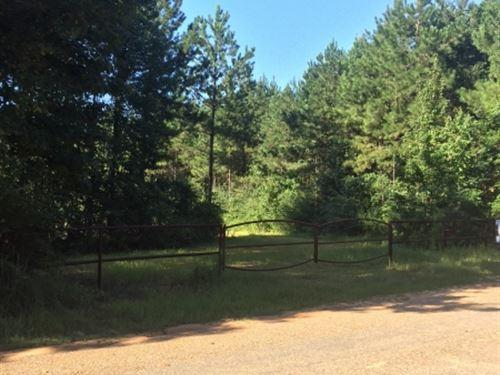 12.34 Acres On Williams-Varnado Roa : McComb : Pike County : Mississippi