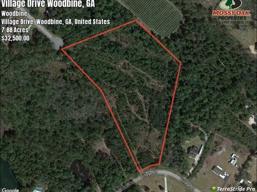 7.8 Acres Land For Sale in Camden : Woodbine : Camden County : Georgia
