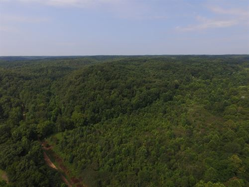 Excellent Recreational Property : Hurricane Mills : Humphreys County : Tennessee