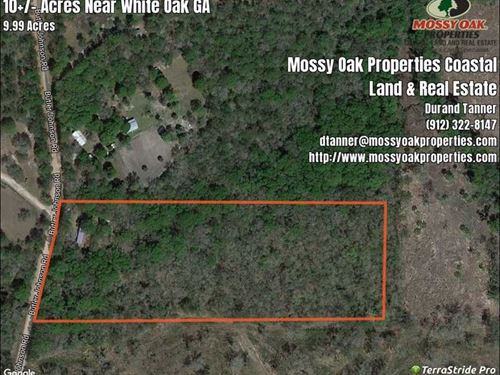 10 Acres With Mobile Home Camden White Oak County