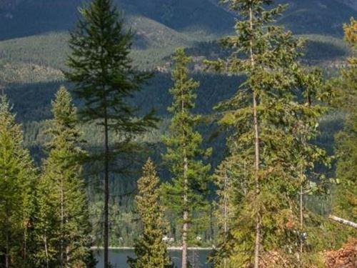 Acreage Close To Downtown Beautiful : Bigfork : Lake County : Montana