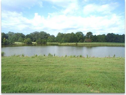 142.5 Acres In Oktibbeha County : Starkville : Oktibbeha County : Mississippi