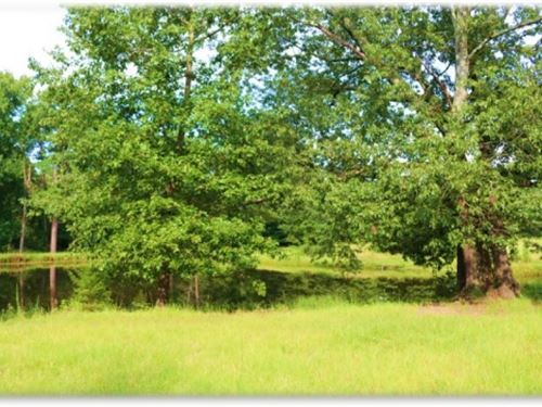 56 Acres In Attala County : Sallis : Attala County : Mississippi