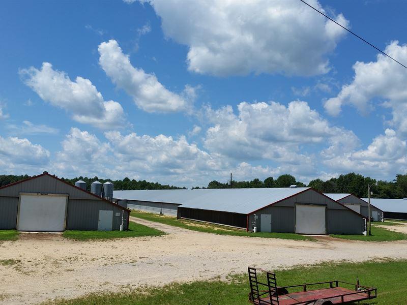 4 House Broiler Farm : Hodges : Franklin County : Alabama