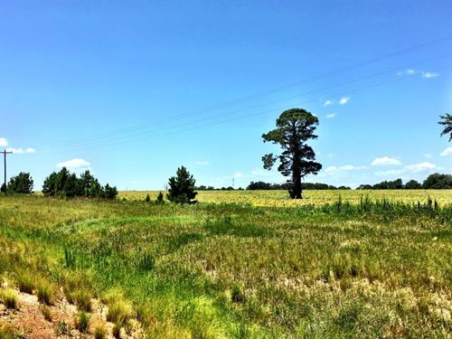 106 Acres Next To Airport : Dublin : Laurens County : Georgia