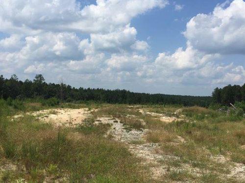 Overlook Tract : Sparta : Hancock County : Georgia