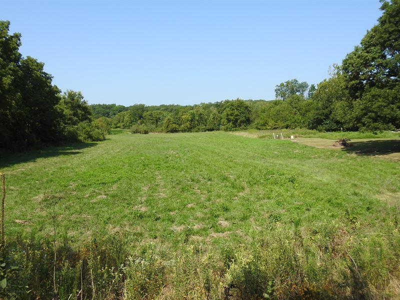 Cropland, Pasture & Wooded Acreage : Casey : Cumberland County : Illinois