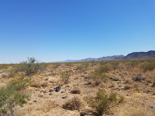 This Land Is Yours For $999 Down : Golden Valley : Mohave County : Arizona