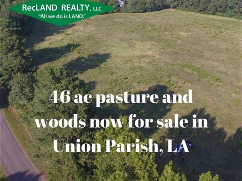 46.1 Ac - Diverse Tract For Rural : Farmerville : Union Parish : Louisiana