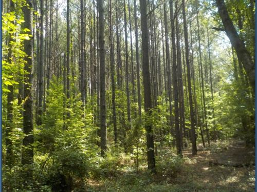 57 Acres In Noxubee County : Shuqualak : Noxubee County : Mississippi