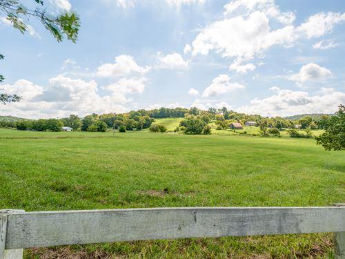 279 Acre Williamson County Farm : College Grove : Williamson County : Tennessee