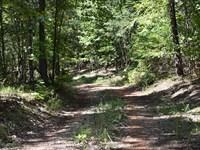 62-013 Walnut Hill 120 : Walnut Hill : Tallapoosa County : Alabama
