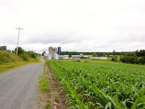 45+/- Acres Land : Forksville : Sullivan County : Pennsylvania