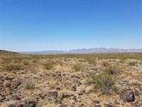 Absolutely Amazing Desert Getaway : Golden Valley : Mohave County : Arizona