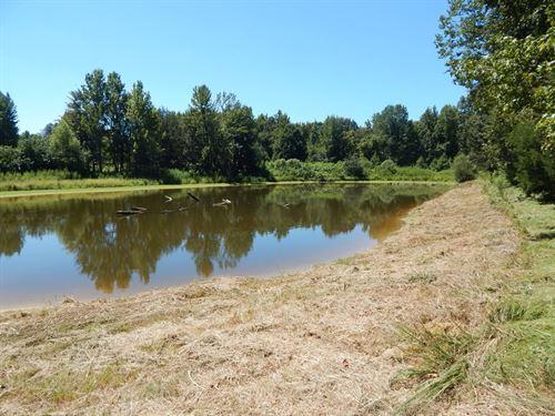 Pasture Land / Hunting Land : Courtland : Panola County : Mississippi