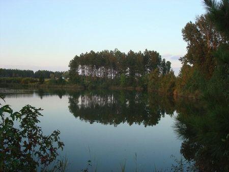 Farmland With Pond : Swainsboro : Emanuel County : Georgia