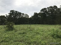 80 Ac - Recreational Tract With Hom : Camdenton : Camden County : Missouri