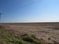 Excellent Row Crop Farm For Sale : Ingalls : Gray County : Kansas