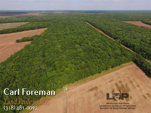 66 Acres Hunting Land : Evergreen : Avoyelles Parish : Louisiana