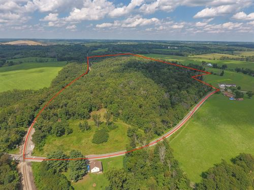 Annapolis Rd - 56 Acres : Hopedale : Harrison County : Ohio