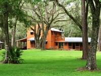 Seaboard Timberlands : Lamont : Jefferson County : Florida