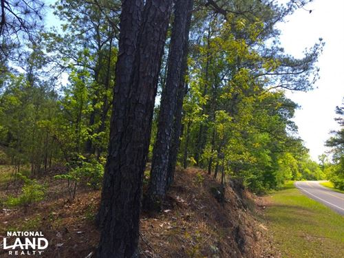 Mt. Pisgah Road Homesite : Kershaw : South Carolina