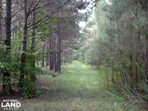 Golding Road New Hope 300 Acres : New Hope : Lowndes County : Mississippi