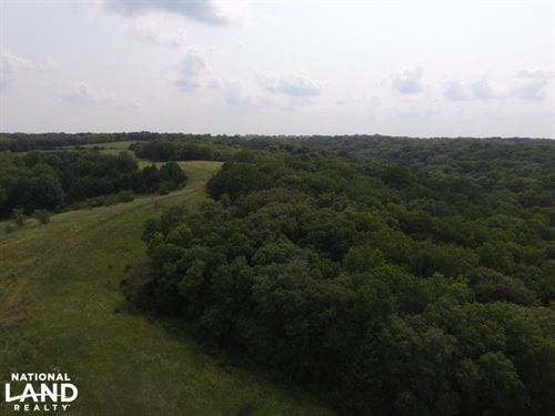 Whitetail Adrenaline Tract : Nebraska City : Otoe County : Nebraska