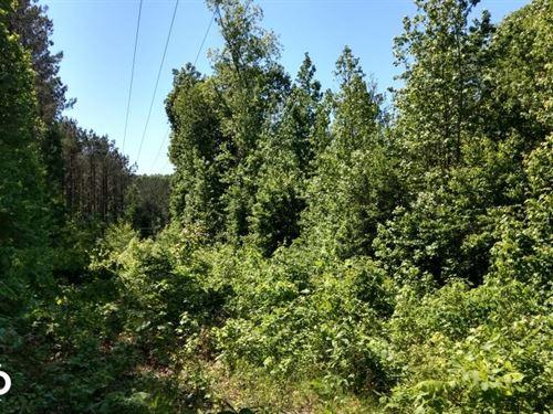 Troy Land : Mount Gilead : Montgomery County : North Carolina