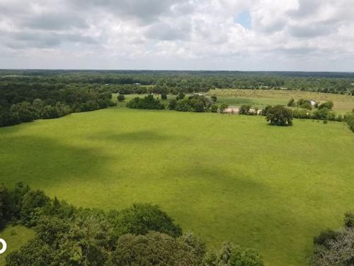60 Acre Recreational/Commercial Acr : Hockley : Waller County : Texas