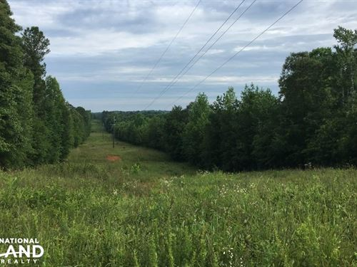 Large Hunting Tract : Greenville : Meriwether County : Georgia