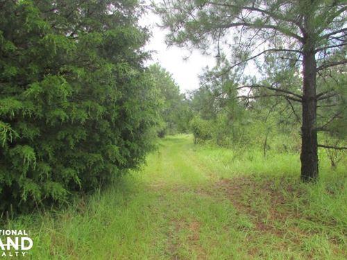 32 Acres Farm/Residential Land : Georgetown : Quitman County : Georgia