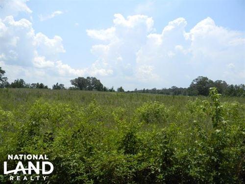 Bailey Springs Farm & Recreation Tr : Ohatchee : Calhoun County : Alabama