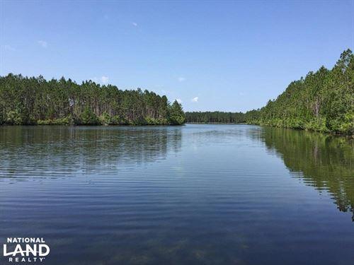 Jeff Hamilton Lake Tract : Mobile : Alabama