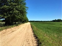 Wagener Hay Farm : Wagener : Aiken County : South Carolina
