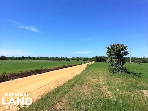 Aiken County Farm Tracts : Wagener : Aiken County : South Carolina